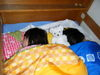 Blog2009_05140079